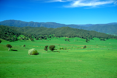 Rural New South Wales photo