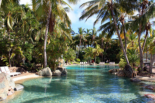 swimming in the virtual community pool Virtual community virtual community the internet is a vast and virtually limitless entity which provides users with a way to explore and develop identity and community through various methods including videos, discussion boards, blogging, photography, business outlets and so much more.