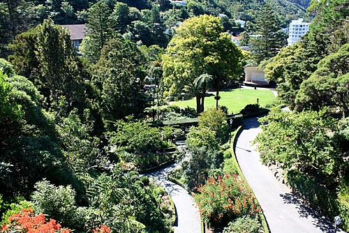 Wellington Botanic Gardens photos
