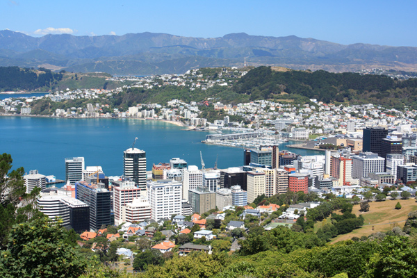 Image result for nz cities