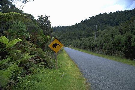 Идеальная пустая дорога. Фотография с сайта virtualoceania.net