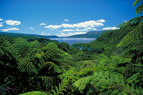 Lake Tarawera photo