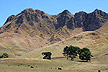Te Mata Peak photos