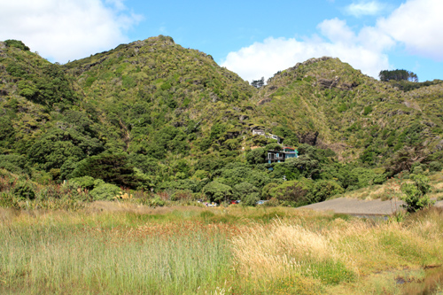 Waitakere Ranges photos
