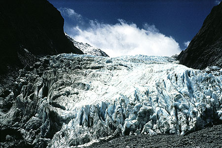 Fox Glacier photo