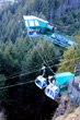 Queenstown Bungee photo