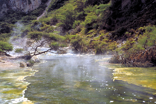 waimangu valley thermal river photo