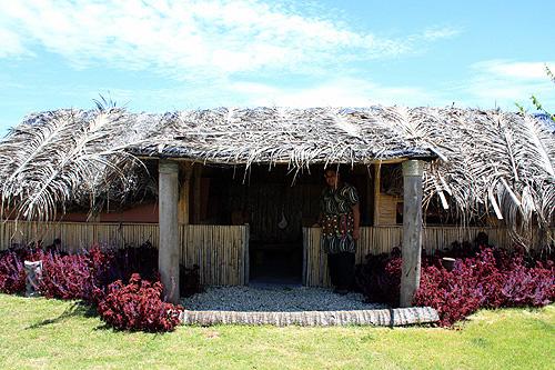Old Tonga Fale Photo